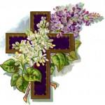 lilac-cross
